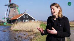 Parteon over biobased bouwen